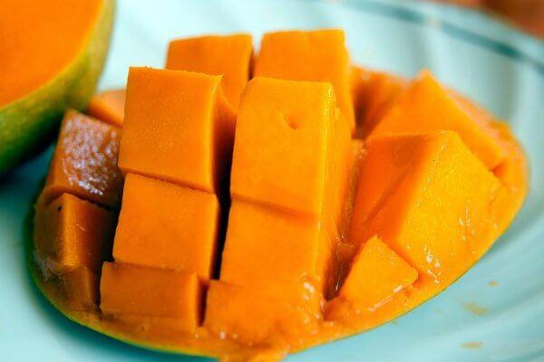 chabad bali | judaism bali | mango