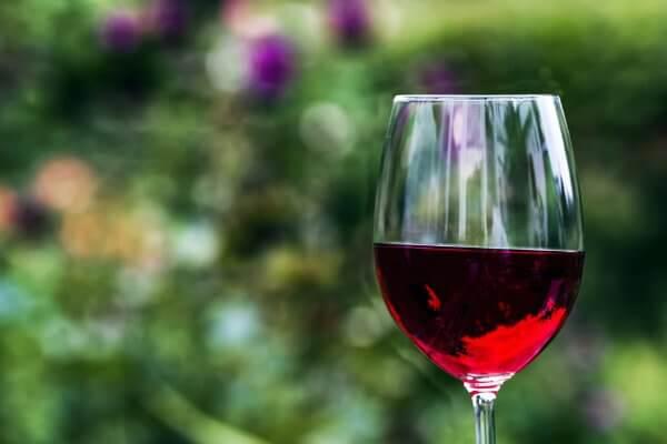 chabad bali | judaism bali | wine